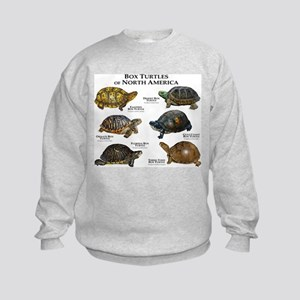 Box Turtles of North America Sweatshirt