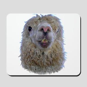 Alpaca Closeup Mousepad