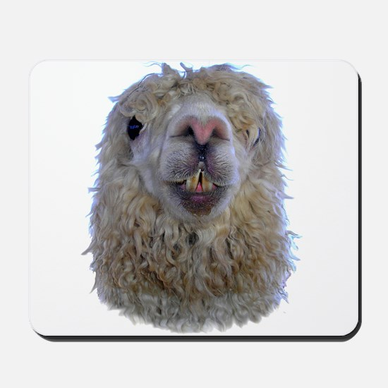 Alpaca Closeup Mousepad