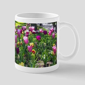 Tulips Park Gardens Mugs