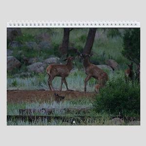 Animal Images Calendar Wall Calendar