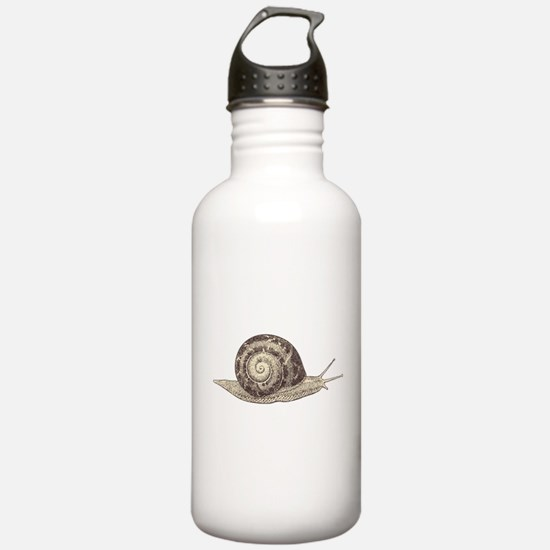 Hand painted animal sn Water Bottle