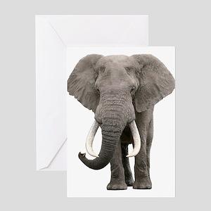 Realistic elephant design Greeting Cards