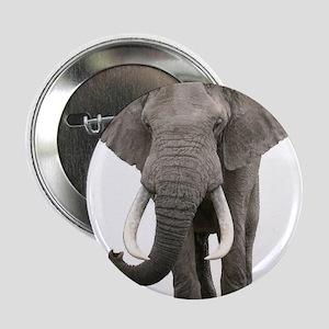 "Realistic elephant design 2.25"" Button"