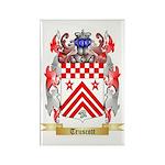 Truscott Rectangle Magnet (100 pack)