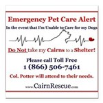 Emergency Pet Care Alert Square Car Magnet 3
