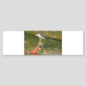 successful fishing Bumper Sticker