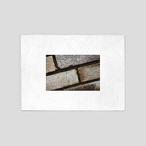 brick 5'x7'Area Rug