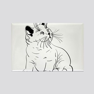 Cat pencil drawing Magnets