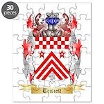 Triscott Puzzle