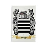 Triggs Rectangle Magnet (10 pack)
