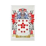 Trezise Rectangle Magnet (100 pack)