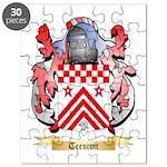 Trescott Puzzle