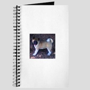 Akita pup Journal