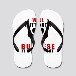 If It's Not Burmese Flip Flops