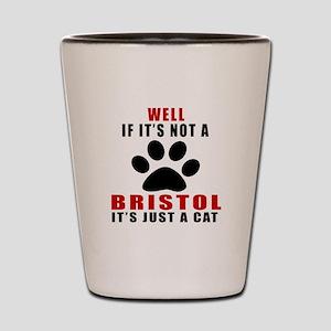 If It's Not Bristol Shot Glass