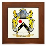 Treloar Framed Tile
