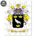 Toulmin Puzzle