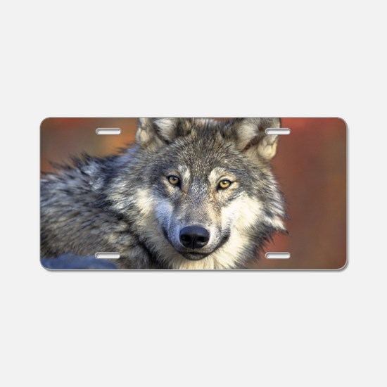 Werewolf Aluminum License Plate
