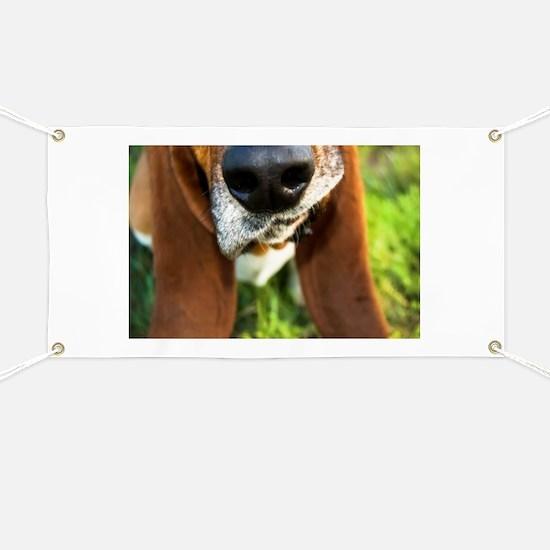 Basset Hound Nose Banner