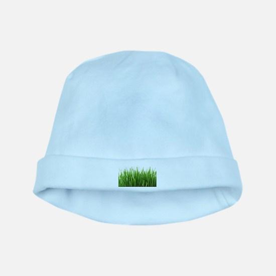 Fresh green grass on white backround- pho baby hat