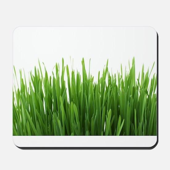 Fresh green grass on white backround- ph Mousepad