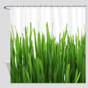 Fresh green grass on white backroun Shower Curtain