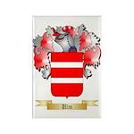 Ulm Rectangle Magnet (100 pack)