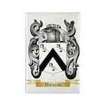 Vielmini Rectangle Magnet (10 pack)