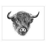 Windswept Scottish Highland Cow Poster Design