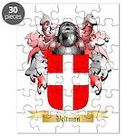 Veltman Puzzle