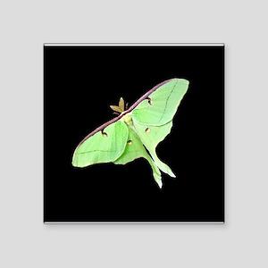 Luna Moth Sticker