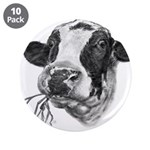 Happy Holstein Friesian Dairy Cow 3.5