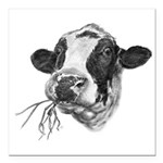 Happy Holstein Friesian Dairy Cow Square Car Magne