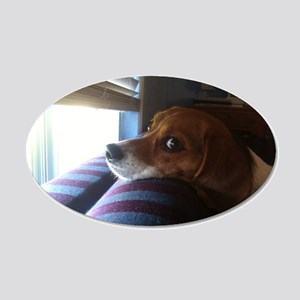 Beagle At Window 13626047 20x12 Oval Wall Decal