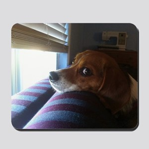 Beagle At Window 13626047 Mousepad