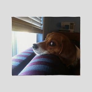 Beagle At Window 13626047 Throw Blanket