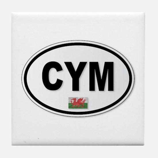 CYM Plate Tile Coaster