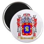 Vedyaev Magnet