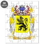 Vaugham Puzzle
