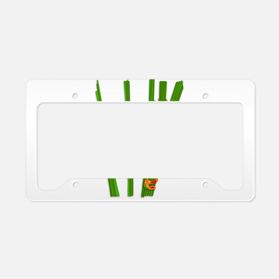 Cute frog on grass License Plate Holder