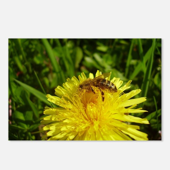 Cute Bees and dandelion Postcards (Package of 8)