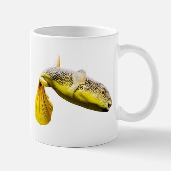 Giant Freshwater Puffer Fish (Tetraodon mbu) Mugs