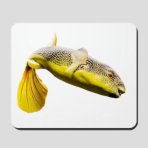 Giant Freshwater Puffer Fish (Tetraodon Mousepad