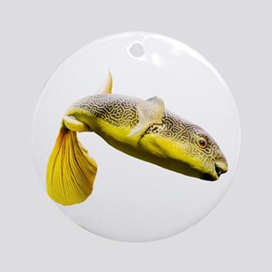 Giant Freshwater Puffer Fish (Tetra Round Ornament