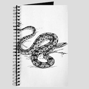 Anaconda clip art Journal
