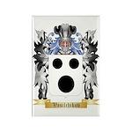 Vasilchikov Rectangle Magnet (100 pack)