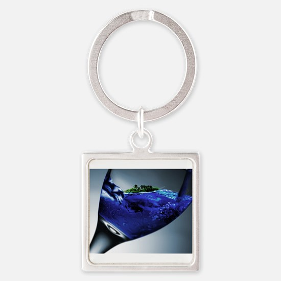 Island in a Glass Keychains