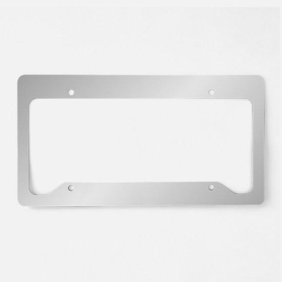 Silver Shine License Plate Holder