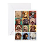Mad Lab Greeting Cards (Pk of 10)